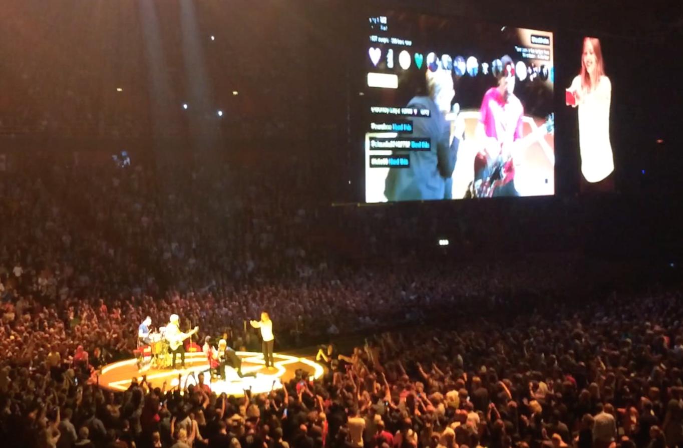 U2_ietour_meerkat